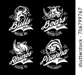 vintage furious bull  boar ... | Shutterstock .eps vector #706799767