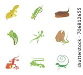 different lizard icons set.... | Shutterstock .eps vector #706812655