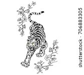 tiger and flowers illustration | Shutterstock .eps vector #706883305