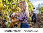 young woman harvesting red... | Shutterstock . vector #707028361