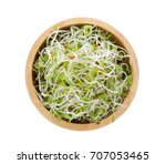 Small photo of Alfalfa Sprout in a bowl on white background