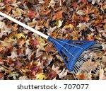 Blue Rake On Fallen Leaves