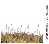 dry grass sketch vector... | Shutterstock .eps vector #707089501