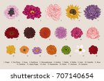 flowers set. botanical vector... | Shutterstock .eps vector #707140654