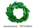 green leaves arranged in round... | Shutterstock . vector #707218561