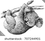 black and white engrave... | Shutterstock .eps vector #707244901