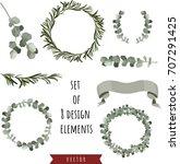 set of eucalyptus and rosemary... | Shutterstock .eps vector #707291425