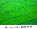 view from hot air balloon of... | Shutterstock . vector #70733275