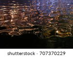 water reflection | Shutterstock . vector #707370229