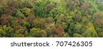 aerial view of the forest | Shutterstock . vector #707426305