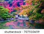 yoshijima is the most beautiful ...   Shutterstock . vector #707510659