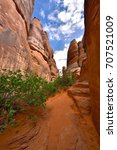 Small photo of USA, Utah, Arches NP - Sand Dune Arch Trailhead