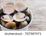 fresh enamel venus shell ... | Shutterstock . vector #707587471
