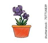 flower plant  vector... | Shutterstock .eps vector #707714839
