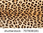 close up view of the skin of a... | Shutterstock . vector #707838181