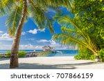 tropical landscape design.... | Shutterstock . vector #707866159