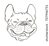 french bulldog  portrait  happy ... | Shutterstock .eps vector #707946751