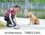 dedicated girl training dog in... | Shutterstock . vector #708011341