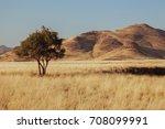 Namibia Desert  Veld