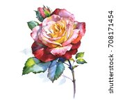Stock photo wildflower rose flower in a watercolor style isolated full name of the plant rosa aquarelle wild 708171454