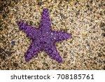 Purple Starfish On A Shellbeac...