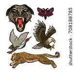 panther  butterfly  crane ...   Shutterstock .eps vector #708188785