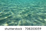 Small photo of September 2017: Undereater photo of fish swimming in turquoise clear waters, Agia Marina, Attica, Greece