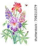 bouquet of irises and lupines ... | Shutterstock . vector #708211579