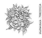 vector black and white vintage...   Shutterstock .eps vector #708223114