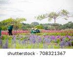 blur gardener man works in the... | Shutterstock . vector #708321367
