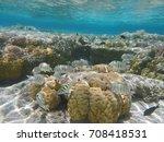 underwater world with corals... | Shutterstock . vector #708418531