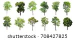 collection of isolated trees on ... | Shutterstock . vector #708427825