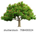 Red Apple Tree Isolated 3d...