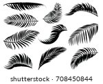 palm leaf silhouette. vector... | Shutterstock .eps vector #708450844