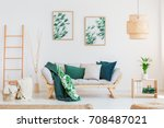 plant on wooden table in... | Shutterstock . vector #708487021