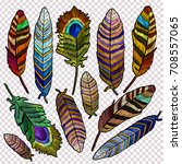 embroidery feathers of tropical ...   Shutterstock .eps vector #708557065