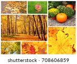 collection of photos with... | Shutterstock . vector #708606859