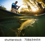 fishing. fisherman and pike ... | Shutterstock . vector #708654454