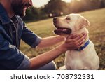 Stock photo cropped image of handsome young man with labrador outdoors man on a green grass with dog 708732331