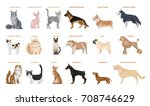 Dogs And Cats Set. Pets Breed...