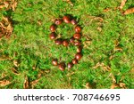 Number 9 Made From Conkers On ...