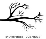 flight of little birds on the... | Shutterstock .eps vector #70878037