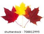 Beautiful Colorful Autumn...