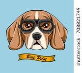 cute pilot beagle dog face... | Shutterstock .eps vector #708821749