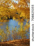 beautiful nature landscape ... | Shutterstock . vector #708825355