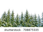 Row Of Frosty Christmas Trees...