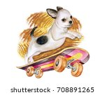 a chihuahua dog on a skateboard.... | Shutterstock . vector #708891265
