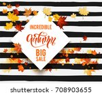 white blank with autumn maple... | Shutterstock .eps vector #708903655