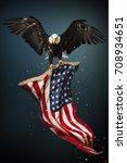 north american bald eagle... | Shutterstock . vector #708934651