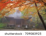 world heritage hiraizumi in... | Shutterstock . vector #709083925
